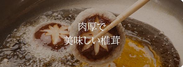 肉厚で美味しい椎茸